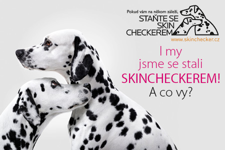 Skinchecker