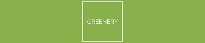 farba roku 2017 - Greenery