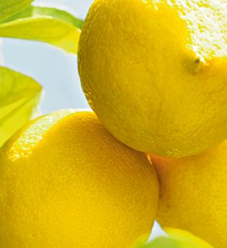 Weleda Citrusy