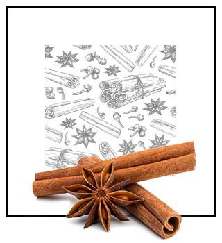 Pánské niche parfémy - kořeněná