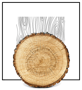 Dámské niche parfémy - dřevité