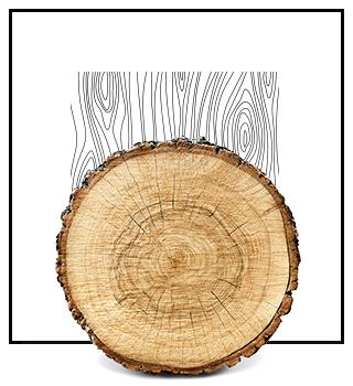Niche parfémy - dřevité